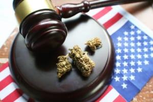 USA Cannabis Image